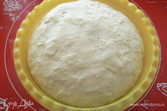 Положить тесто в миску, накрыть и оставить в теплом место ~ на 1,5 часа (тесто должно увеличиться в 2 раза)