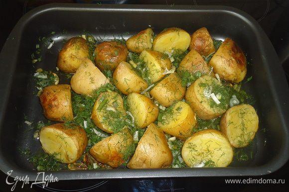 картошку помыть, если крупная, то порезать пополам и поставить вариться. когда картошка закипит, варить 10-15 минут, соль по вкусу.