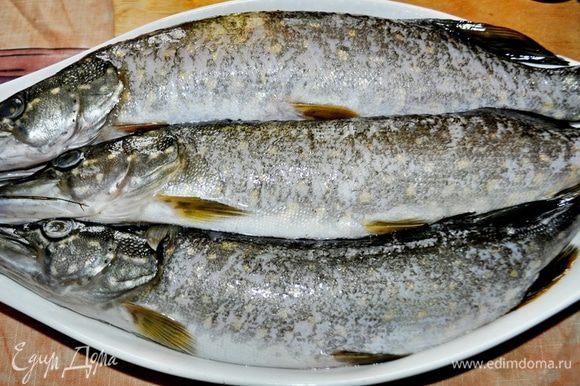 Подготовить рыбное филе: для этого щуку очистить от чешуи,внутренностей, головы, плавников и хвоста. Вынуть хребет, нарезать филе на куски