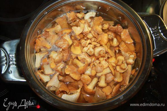 Отварить грибы в подкисленной воде в течение 15 минут после закипания.