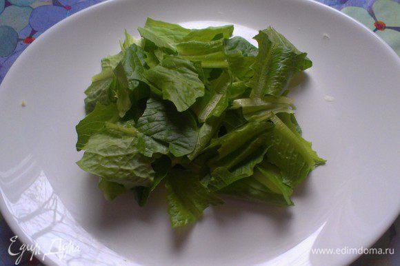 """положил в нее нарезанные салатные листья """"ромен"""" *Листья салата я аккуратно помыла, обсушила бумажным полотенцем и положила в холодильник до момента готовки. Салатные листья должны быть из холодильника – упругие и хрустящие. Чем холоднее и свежее листья, тем они хрустящее, а чем меньше воды на них остается, тем лучше заправка будет покрывать их. Я порвала салат руками."""