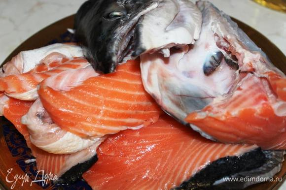 Рыбу разделать – очистить от чешуи, удалить жабры, голову разрезать вдоль пополам, вымыть. Для ухи лучше всего подойдет следующий набор: голова, хвост, хребет, брюшки и мясо из любой части рыбы. Все кусочки обсушить бумажным полотенцем.