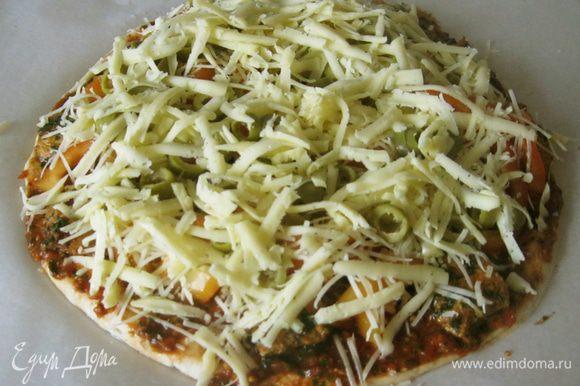 Далее оливки и мягкий сыр (в моем случае гауда), натертый на крупной терке. Противень с пиццей поставил в горячую духовку на сорок минут. Уже через пару минут кухня наполнилась ароматом чеснока из соуса. Даже котик прибежал, наверное, сыр учуял. Пармезан он не ест, зато гауду любит.