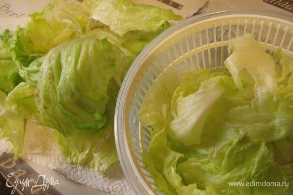 Листья салата вымыть, обсушить и нарвать руками в салатник.