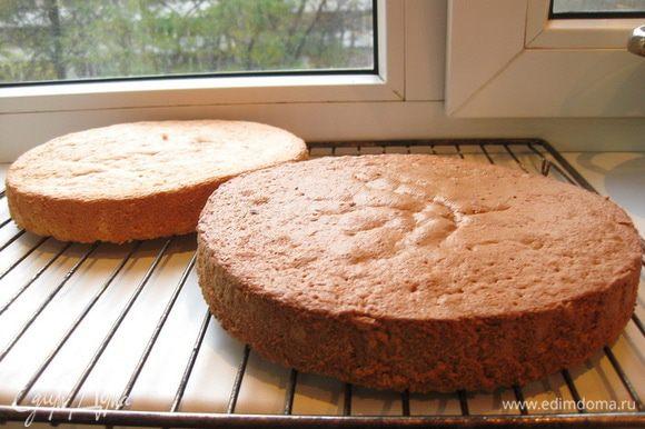 Также поступить с темным тестом. Готовые бисквиты выложить на решетку и дать остыть. Каждый бисквит разрезать на две части.