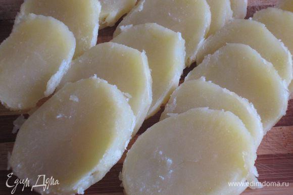 Картофель отварить до готовности. Остудить и нарезать кружочками. Петрушку и чеснок измельчить.
