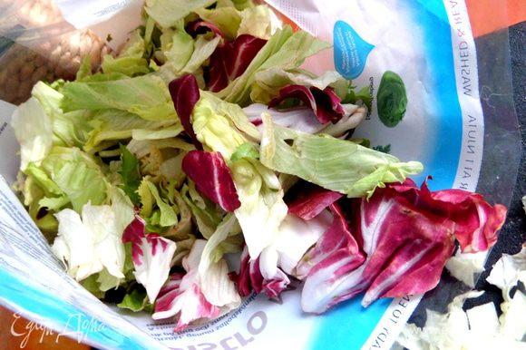 А вот микс, который я купила уже чистенький! В состав входят 3 салата, по-латышски так звучат: ledus salati, frize salati, cigorinu salati.
