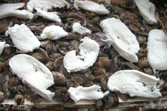 Положить слой грибов и выложить кусочки моцареллы.