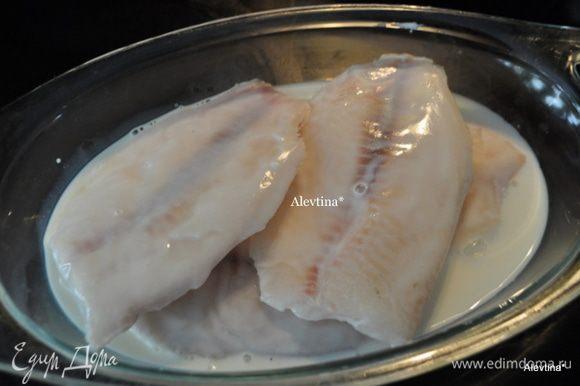 Разогреть духовку до 210 гр. В молоко положить филе тилапии на 15 мин.