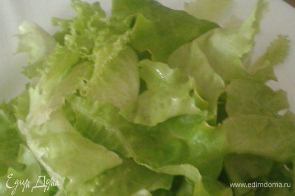 Клубнику помыть, разрезать на четыре части. Лист салата порвать руками.