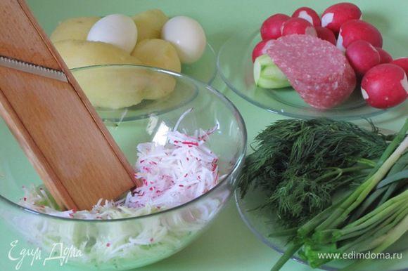 Яйца отварить вкрутую, остудить, очистить. Вымыть редис, огурцы, зелень. Огурцы очистить от кожицы.