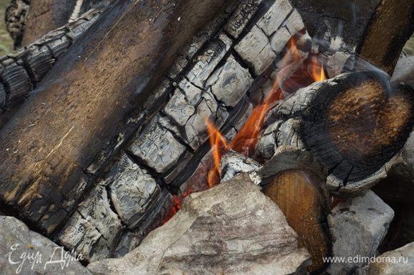 Тем временем готовим угли. Для приготовления шашлыка лучше всего использовать березу, липу, дуб и все породы фруктовых деревьев (яблоню, грушу, сливу, вишню, черешню, абрикос, персик и другие), виноградную лозу.
