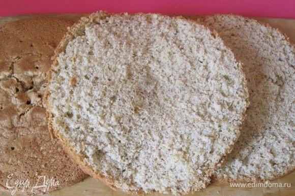 Остывший бисквит разрезать на 3 коржа.