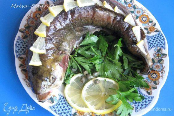 При подаче посыпать зеленью, украсить лимоном. Для глаз использовала каперсы и перец горошком. Сопроводить блюдо лавашем, зеленью и свежими овощами.