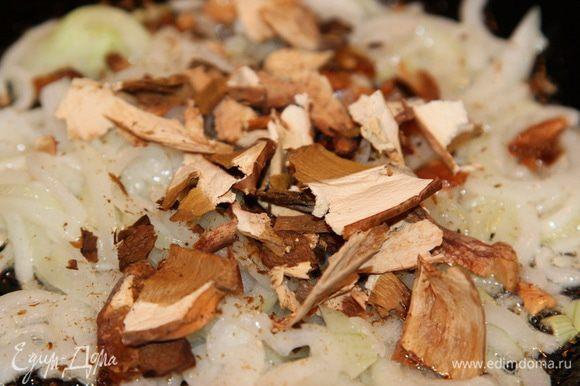 Лук очищаем и пассеруем на растительном масле, добавляем сухие грибы.