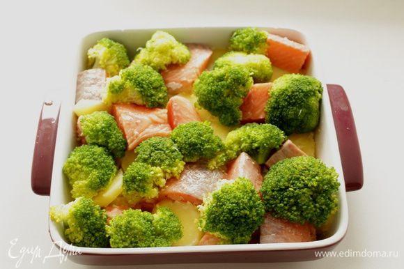 Выложить в форму брокколи,залить сливочной смесью.