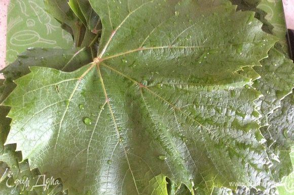 Листья винограда промыть залить кипятком на 10 минут.