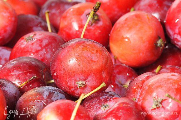 Переберите яблоки, они не должны быть червивые и гнилые. Каждую из них необходимо наколоть. зубочисткой в нескольких местах.