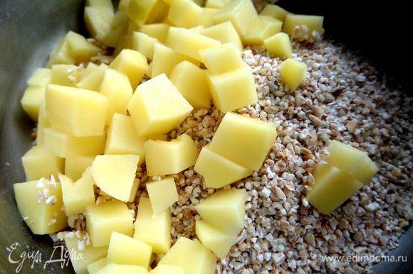 Нарежем картофель на кубики и высыпаем к крупе. Заливаем свежей водой и ставим вариться на средний огонь. Солим по вкусу.