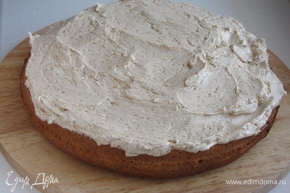 Сборка торта. Промазать два бисквитных коржа охлажденным кремом.