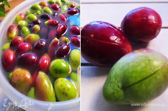 Для приготовления маслин в домашних условиях нам понадобиться крупная соль, вода и винный уксус по желанию специи, лимонный сок.