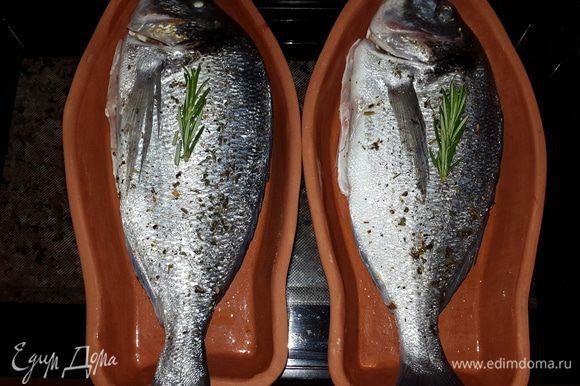 Далее, тарелки обсушила полотенцем, смазала оливковым маслом, выложила рыбу и поставила в холодную духовку, включила на 180 С и запекала 40 минут.