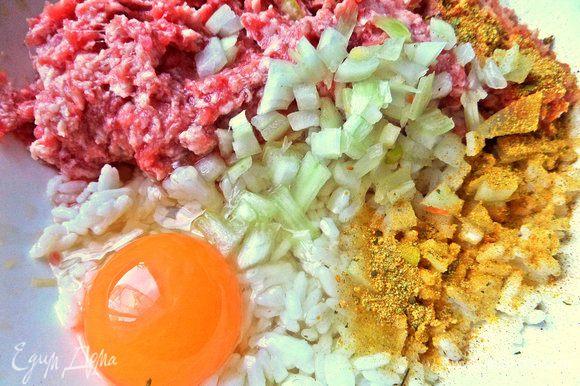 Добавить яйцо, немного лука, приправы для фарша.