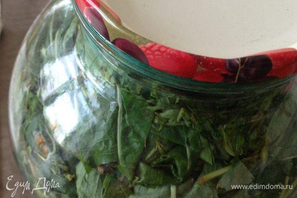 Накрыть тарелкой и убрать на два дня в темное место( для ферментации).