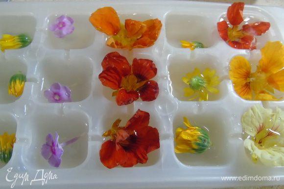 Вначале приготовим лед. В емкость для льда выложить цветы и залить до половины минеральной водой без газа. Отправить в морозилку, через некоторое время, когда лед схватится, долить воду чтоб она покрыла цветы.