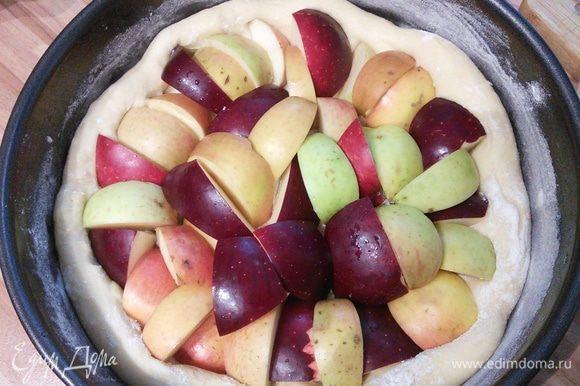 Яблоки помыть, разрезать на четвертинки и уложить плотно кожицей кверху. Яблоки лучше выбрать мелкие, в зависимости от размера их может понадобиться от 10 до 15 штук.