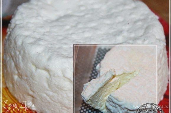 Через две недели сыр приобретает вот такой вид. Снаружи вот такая бело-сливочная корочка с плесенью образуется, а внутри будет, очень, извините, ароматно и вкусно.