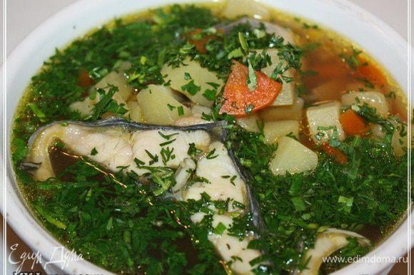 Ну и собственно — «…Выложить осторожно рыбные звенья в суповую чашку, всыпать зеленого укропа, залить процеженною ухой. Подаются отдельно полуломтики лимона, очищенного от кожицы и зерен. Многие любят и зеленый мелко изрубленный лук. Из пирожков подаются расстегая, московская кулебяка, пирожки с визигой и саго и пр…». А теперь два слова про ощущения и прочее. Уха получилась наваристости сумасшедшей. Но, конечно, тяжеловатая еда, как ни крути, поэтому рюмка вторая пшеничного сока вполне будет уместна. А так очень даже вполне! Ангела вам за трапезой!