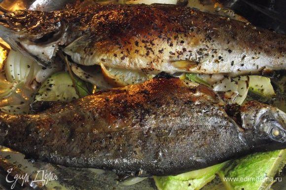 Периодически поливать соком. Запекаем до румяной корочки. Но, будьте осторожны, чтобы не пересушить нежное мясо рыбы. Через 15 минут проколоть вдоль хребта зубочисткой, если сок прозрачный — рыба готова! Время приготовления зависит от размера тушки форели.