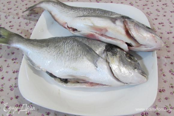 Рыбу почистить, выпотрошить и удалить жабры. Хорошо промыть под водой. Осушить бумажным полотенцем. Посолить со всех сторон.
