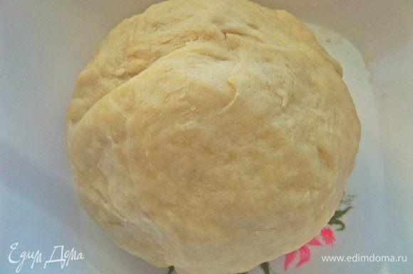 Развести дрожжи (2 г) в теплой воде или муке (как написано на упаковке), смешать с оливковым маслом и мукой, солью, замесить крутое тесто.