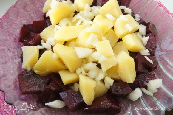 На блюдо раскладываем свеклу, потом картофель и маринованный лук.
