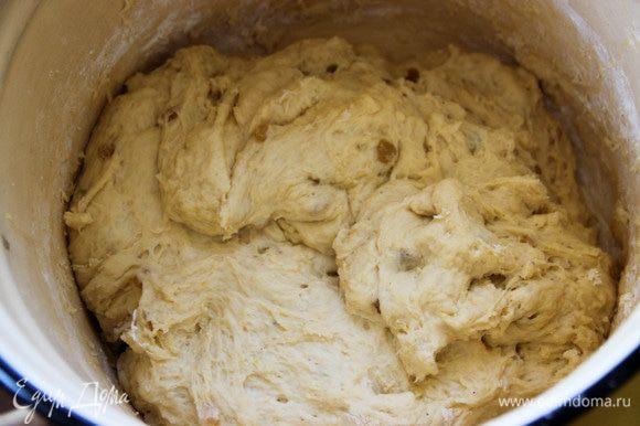 Утром в тесто добавляем муку — сколько возьмет. У меня в общей сложности ушло 2,5 кг муки. Хорошо вымешиваем, даем тесту постоять еще 30 минут.