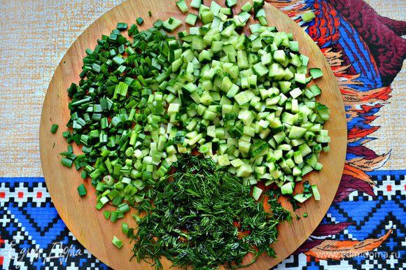 Огурцы нарежьте мелкими кубиками, зеленый лук и укроп мелко порубите.