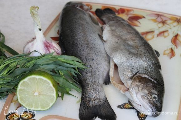 Рыбу почитстите, выпотрошите, удалите жабры. Посолите и поперчите внутри и снаружи. В брюшко положите несколько веточек тархуна, несколько пластинок чеснока и пару долек лайма. Оставьте рыбу в холоде на 30 минут.
