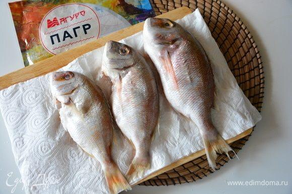 Рыбу выпотрошить, почистить, помыть и протереть насухо бумажным полотенцем. Пагр очень крепенькая рыба, чистится легко и быстро.