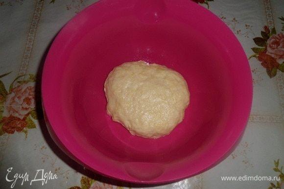 Замешиваем тесто. Чашку смазываем растительным маслом. Накрываем полотенцем и оставляем на 1 час в теплом месте.