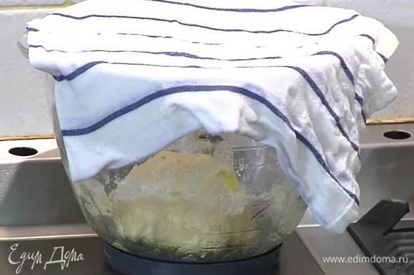 Сформировать из теста шар, поместить в миску, смазанную оливковым маслом, накрыть смоченным в горячей воде и отжатым полотенцем и поставить в теплое место на 15 минут.