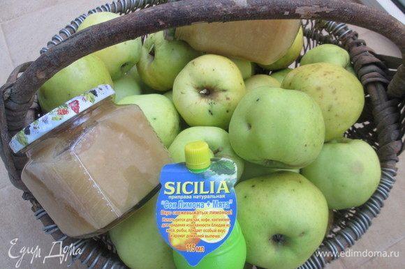 Предлагаю и вам попробовать это яблочное лакомство. Вкусная и полезная заготовка очень пригодится зимой для десертов и выпечки.
