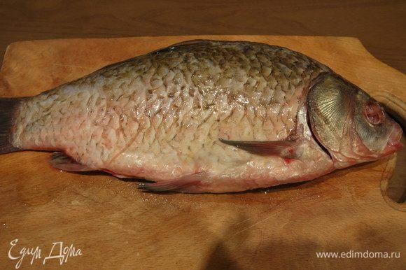 Рыбу чистим: вырезаем жабры, потрошим, очищаем от чешуи, моем.