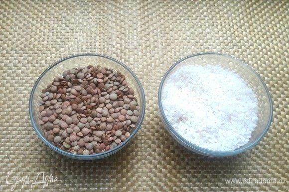 Рис и чечевицу сварить до полной готовности.