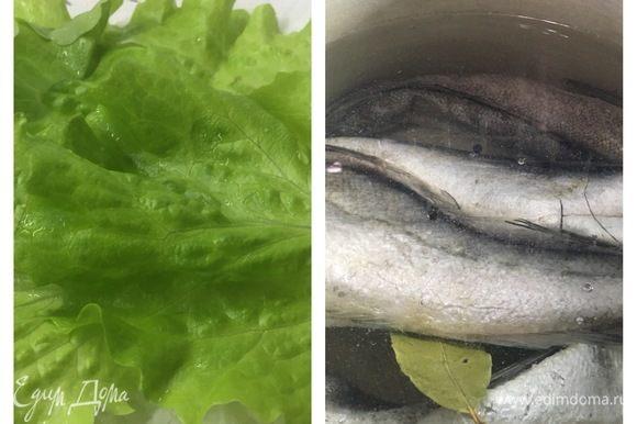 Отварить хек ТМ «Магуро». Подготовить листья салата, нарезать соленые огурцы, лук, помидоры.