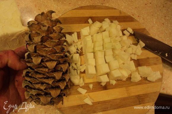 Шинкуем не мелко капусту (кедровая шишка, как ориентир). :)