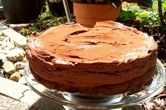 Вот такой насыщенный шоколадный торт у вас получится.