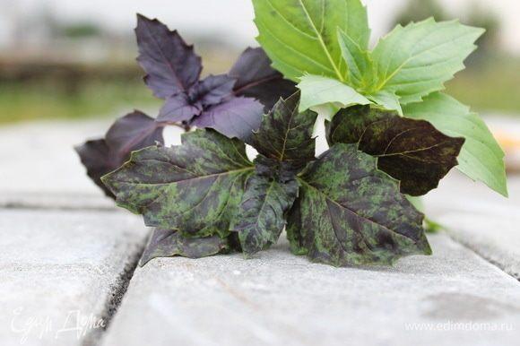 Сначала нужно хорошенько промыть листья базилика и обсушить их. Если листья будут с влагой, то цвет у песто получится некрасивый травяной.