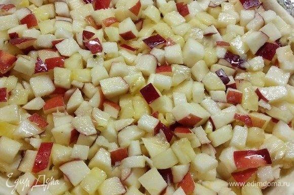 Тесто раскатать и распределить по форме для выпечки, сделать вилкой проколы, чтобы в дальнейшем тесто при выпечке поднялось равномерно. Переложить начинку.